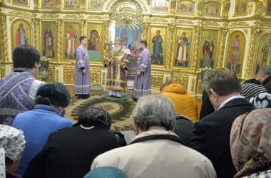 Божественная литургия в Казанском соборе. 15 марта 2015 года.