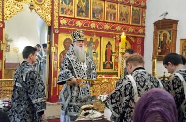 Литургия Преждеосвященных Даров в Иоанно-Предтеченском храме. 9 марта 2015 года.