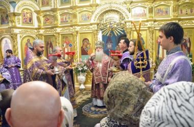 Литургия свт. Василия Великого и чин умовения ног в Казанском соборе (9 апреля 2015 года).