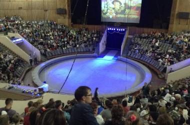 Воспитанники Воскресной школы «Вдохновение» Иоанно-Кронштадтского храма посетили цирковое представление, посвященное 70-летию Победы