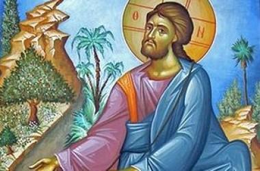 Притча о сеятеле. Слово в Неделю 22-ю по Пятидесятнице