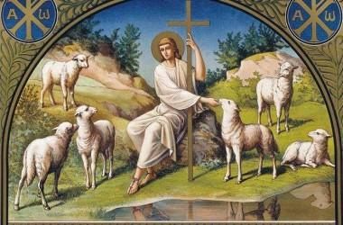 Великое дело – успокоиться и довериться Христу
