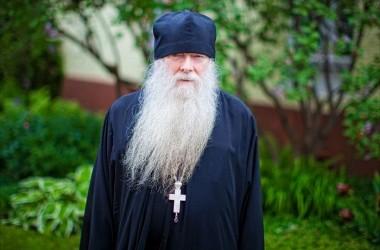 «МЫ ЗАХВАЧЕНЫ ЧЕПУХОЙ И БЕЗУМИЕМ» Схиархимандрит Иоаким (Парр) о миссии и монашестве в мегаполисе