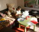 Церковь откроет семь новых приютов для матерей в трудной жизненной ситуации