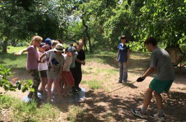 Более двухсот детей отдохнут и потрудятся летом в приходских лагерях Волгоградской епархии