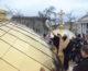 Освящены малые купола собора Александра Невского