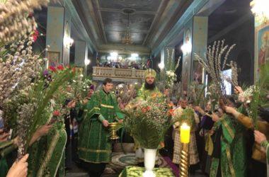 Митрополит Феодор возглавил Всенощное бдение в канун празднования Вербного Воскресенья