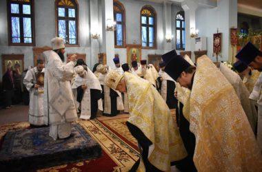 Священнослужители Волгоградской епархии поздравили правящего архиерея с праздником Рождества Христова