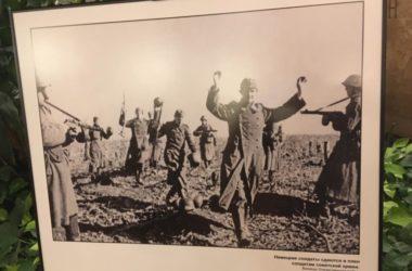 Уникальные кадры военного Сталинграда представлены на фотовыставке в Москве