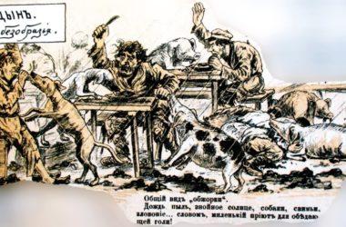 Холера и другие эпидемии в Царицыне