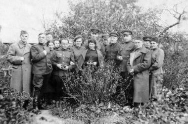 Эпидемии в Сталинграде: битва с невидимым врагом