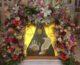 3 августа — день памяти преподобной Арсении (Себряковой)