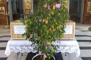 Сбор помощи для школьников объявлен в храме Сергия Радонежского