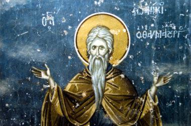 Православная Церковь празднует день памяти преподобного Иоанникия Великого