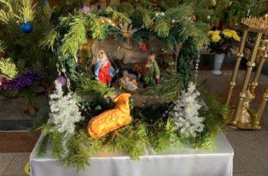 Храмы Волгоградской епархии украшены к Рождеству Христову