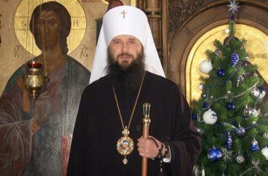 Митрополит Феодор поздравляет волгоградцев с Рождеством Христовым