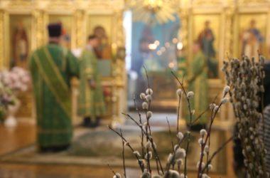 Евангелие дня: Литургия в Неделю ваий